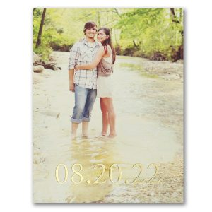 Tie the Knot Save the Date Postcard Icon